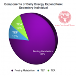 Components of Daily Energy Expenditure Percentage - Sedentary